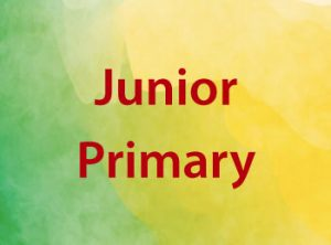 Seelect Educational Supplies Phonic Decodables for Junior Primary